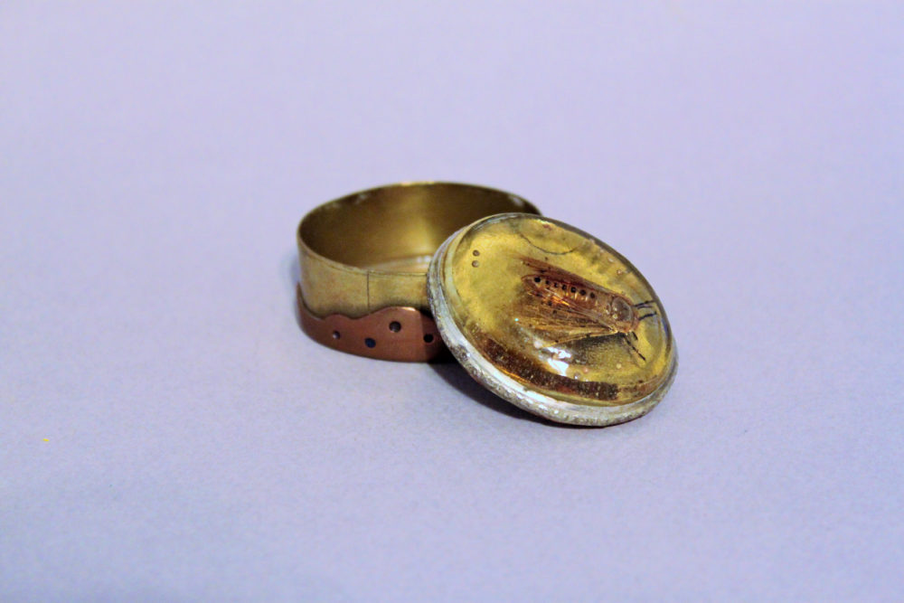 Small round metal cylinder container with a moth set in resin on the lid